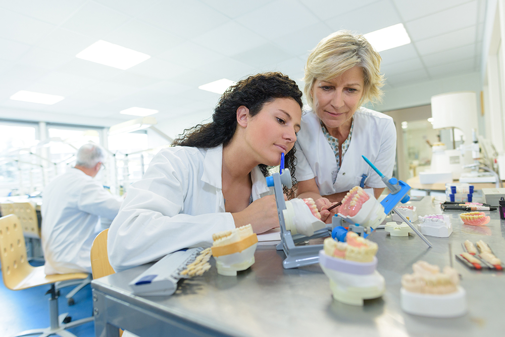 entry-level model technician position - Dental lab employees working on a dental case